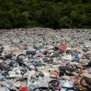 Ecologia - Pesanti sanzioni per gli ecoreati
